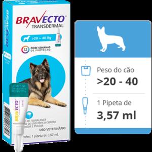 Bravecto Antipulgas E Carrapatos Transdermal Cães 20 – 40 kg